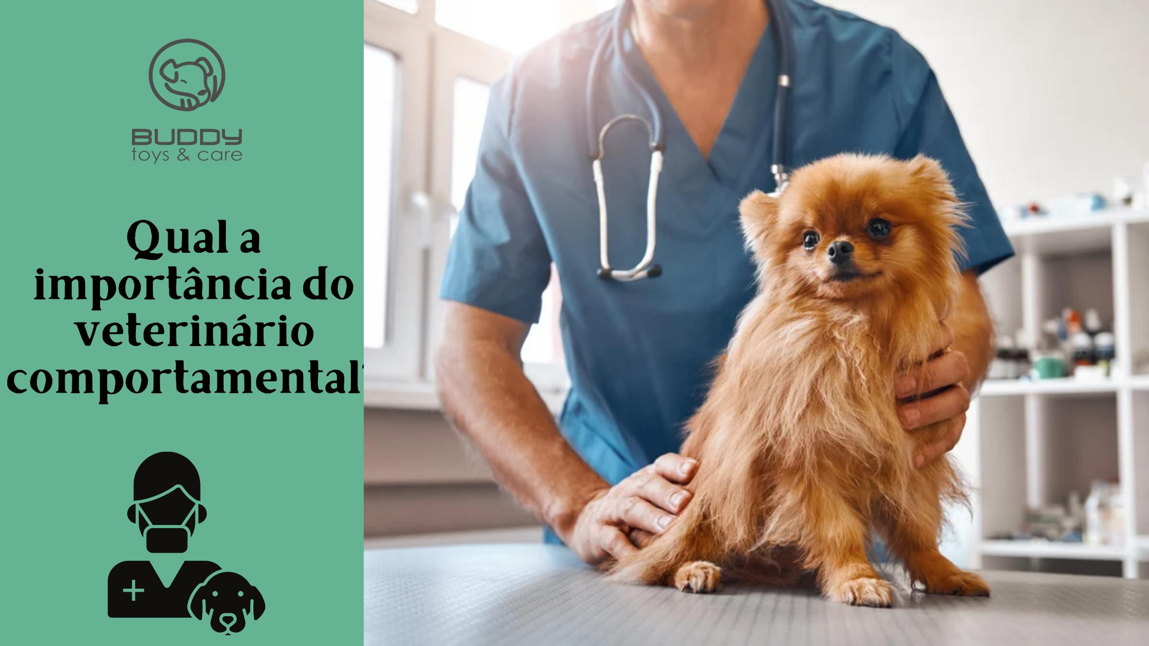 Qual a importância do vet comportamental?