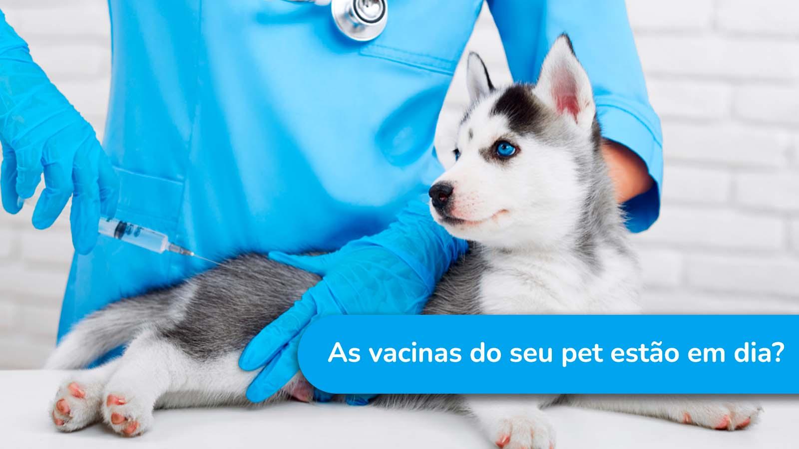 As vacinas do seu pet estão dia?