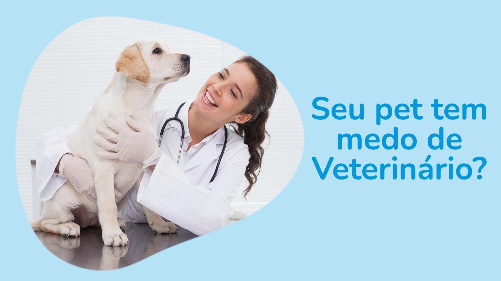 Seu pet tem medo de veterinário?