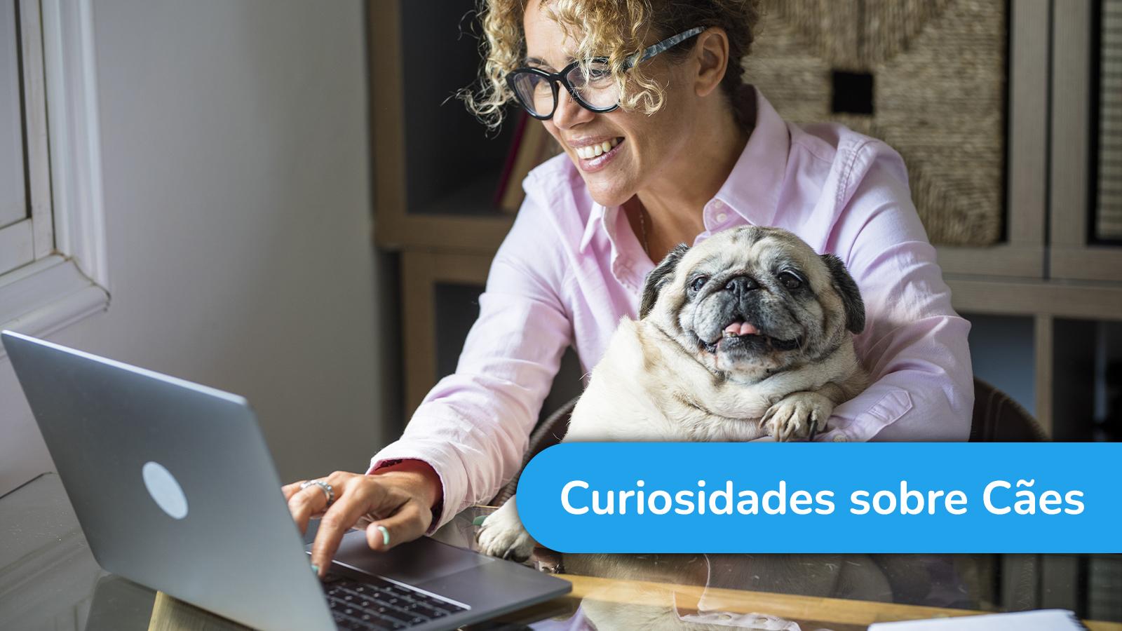 5 curiosidades sobre cães