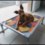 Cama cães Buddy Toys
